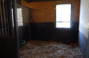 Außenbox kleiner Stall